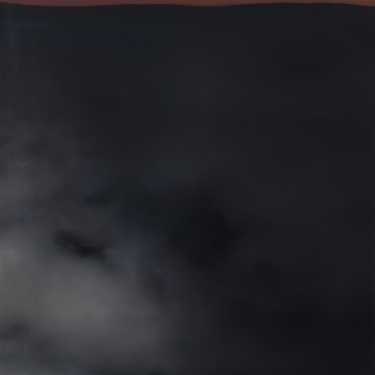 Christopher Saunders Whitenoise No. 13, 2011 [CS.04] Oil on linen 24 x 18 in.